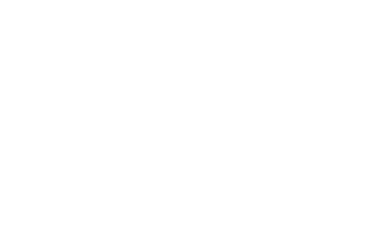 Urban Dog Paris